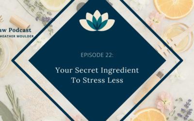 #22: Your Secret Ingredient To Stress Less (Taking Breaks)